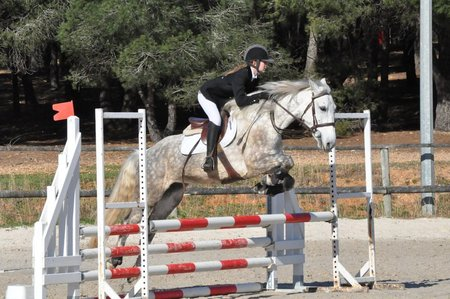 Cours Equitation Montpellier